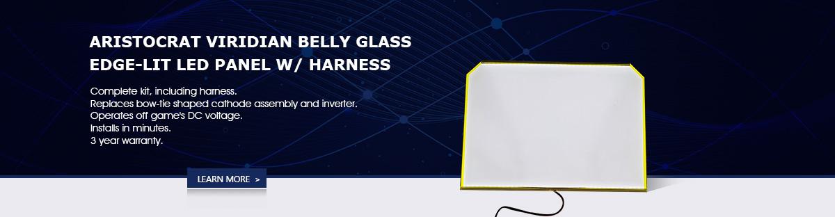 segmented LCD module